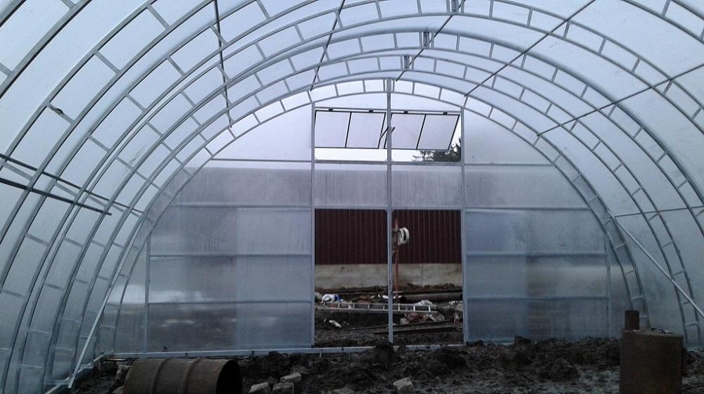 Фермерская теплица внутри